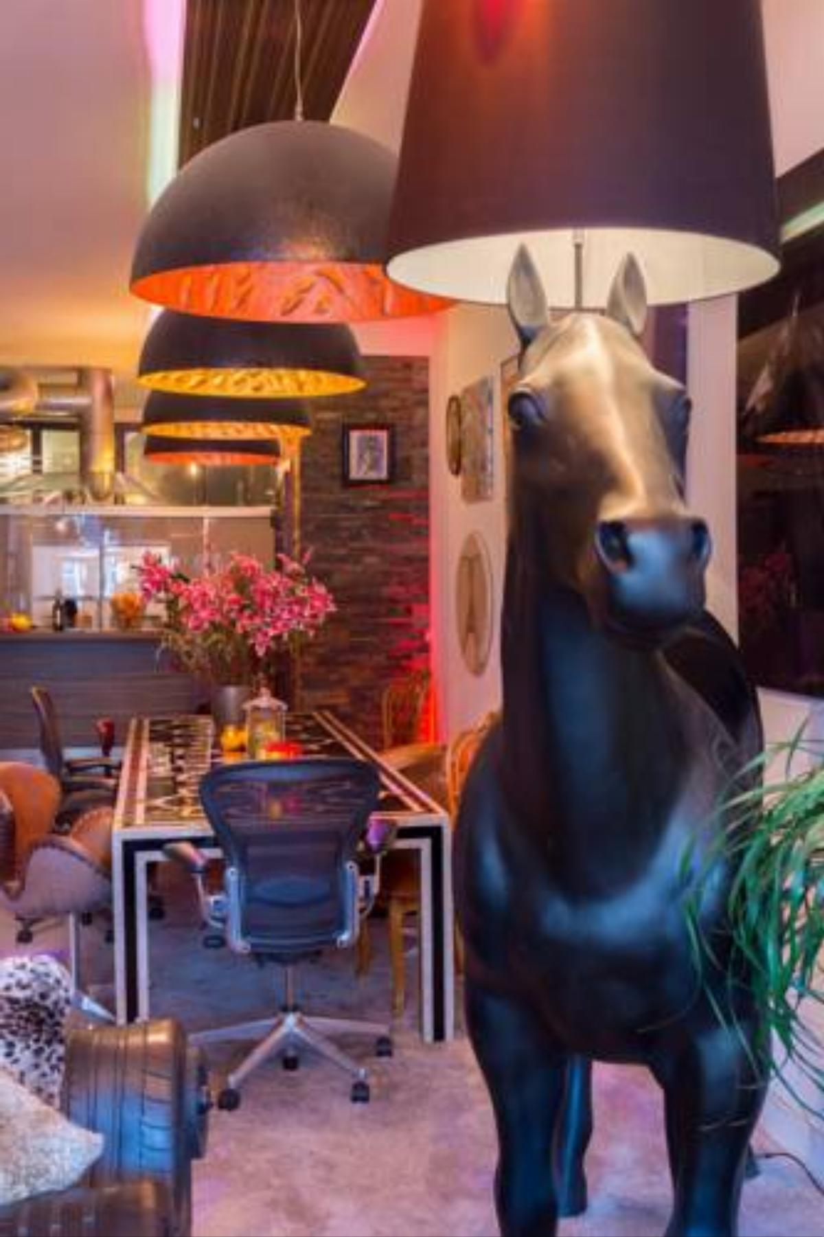 180 M2 CENTRAL ....ART ...LOFT ..JACUZZI...HORSE.. Hotel Amsterdam Netherlands