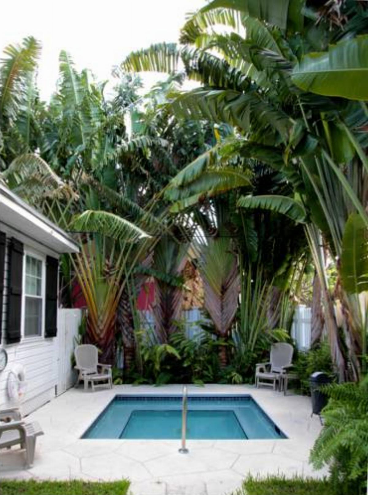 An Island Oasis Hotel, Key West, USA - overview