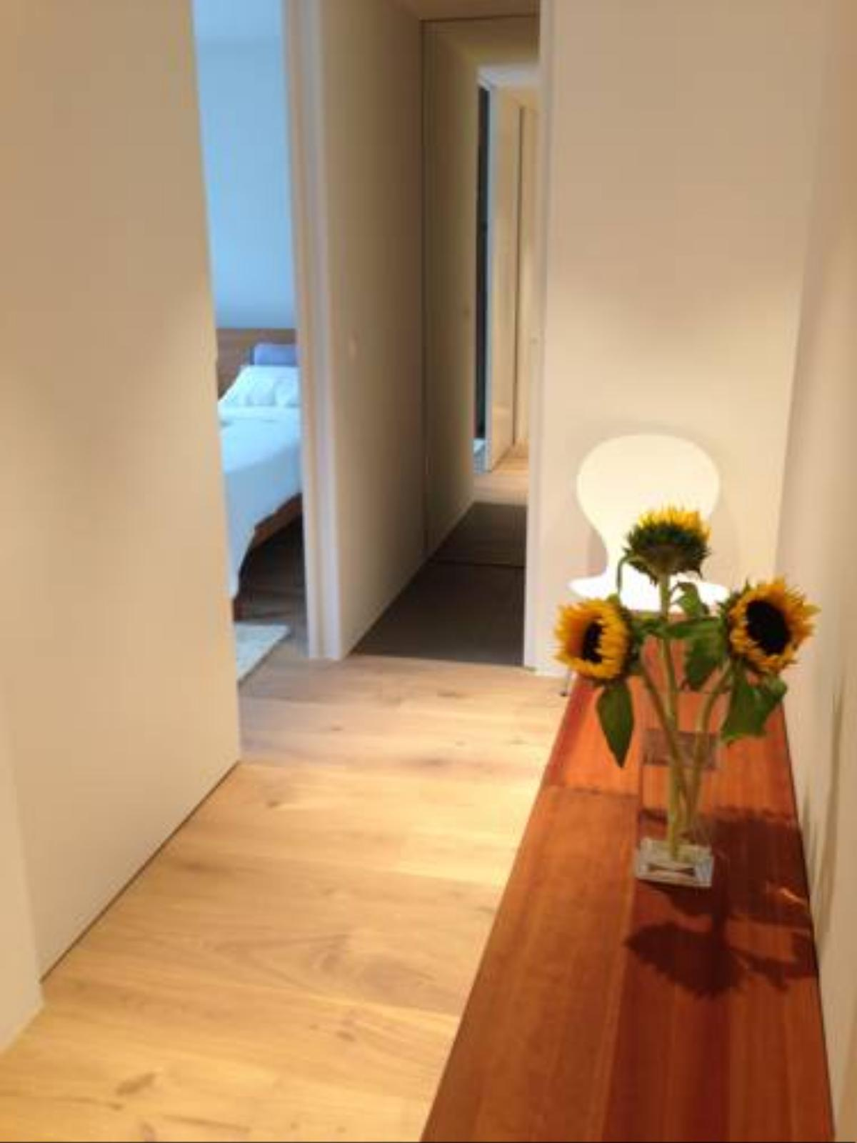 Carouge Loft Apartment Hotel Geneva Switzerland