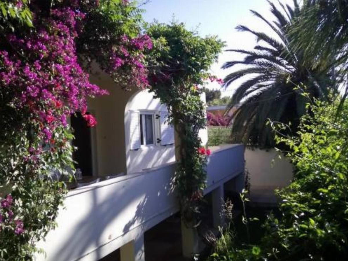 Lagonissi Summer House Hotel Lagonissi Greece